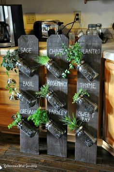 Mason Jar Herb Garden Ideas Grow fresh herbs in your kitchen with this easy Mason Jar Herb Garden. Check out the Recycled Bottle Herb Garden and the Indoor Herb Cheat Sheet too!Grow fresh herbs in your kitchen with this easy Mason Jar Herb Garden. Mason Jar Herbs, Mason Jar Herb Garden, Mason Jar Diy, Mason Jar Planter, Garden Projects, Diy Projects, Pallet Projects, Diy Kitchen Projects, Design Projects