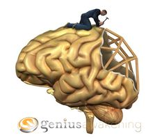 5 Facts About Neuroplasticity - Not long ago, it was believed that your brain stopped growing when you reached adulthood. Research has proven this to be untrue. The theory developed is referred to as neuroplasticity ...