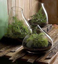 Bocal en verre : Idée de décoration design