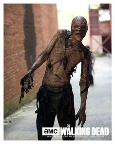 Walking Dead  Stephen Vining  TWD  Autographed/Personalized