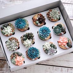Here, we present bakers who create the best nature-inspired cakes, including flower cake, succulent cake, and geode cake creations. Cupcakes Succulents, Kaktus Cupcakes, Cupcakes Flores, Edible Succulents, Pretty Cakes, Beautiful Cakes, Amazing Cakes, Mini Cakes, Cupcake Cakes