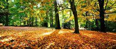 EQUILÍBRIO: Primavera que vai chegar, Kalil Gibran