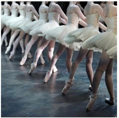 professional ballerinas wall mura