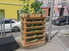Gardening, Outdoor Structures, Ideas, Lawn And Garden, Horticulture, Square Foot Gardening, Garden Care