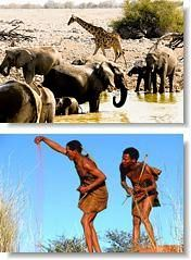 Animals at a waterhole and people of a different culture- Time Out Ladies Travel Namibia