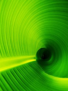 green vortex