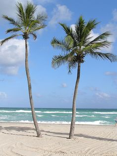 Hollywood Beach, FL Spent a lot of time while growing up. A fun day