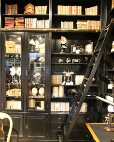 Wunderkammer + bookshelf + library ladder + black = gimmie