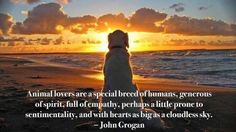 I love this quote from John Grogan, author of Marley and Me. Dog Quotes, Animal Quotes, Animal Pics, Dog Sayings, Truth Quotes, Quotable Quotes, I Love Dogs, Puppy Love, Big Dogs