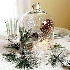 simple pinecones & glass bubbles under Cloche