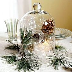 simple pinecones & glass bubbles under Cloche