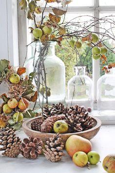 Nå fylles orangeriet   med naturmaterialer...   For om ikke så lenge....starter julepyntingen her hjemme !   Kongler er helt klart e...