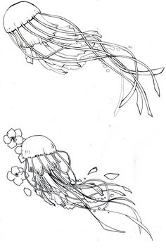 preliminary design: jellyfish by kitton on deviantART