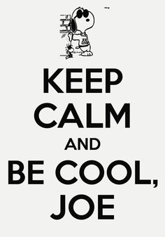 6904b8c7e8 Be Joe Cool Charlie Brown Peanuts