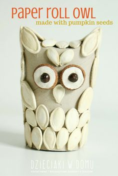 paper roll owl craft for kids made with pumpkin seeds
