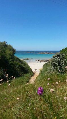 Bretagne - Kerfissien - Finistère