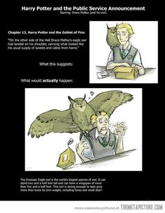 Draco Malfoy and his owl… I love how happy the owl looks in the second picture.
