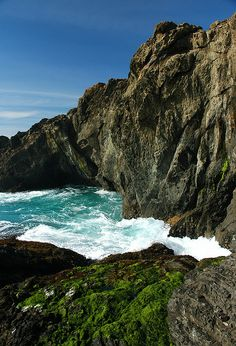 """Stop to admire the beauty of the Mendocino Coast on your California Road Trip. Another pinner said: """"Cove on the Mendocino Coast of California by OceanRudy"""""""