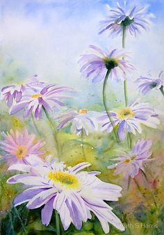 Huge white daisies in summer. / Watercolors (I use a mixture of M Graham, W&N, Daler Rowney and Schmincke) on Fabriano Artistico extra white CP 140lb paper. • Buy this artwork on stationery and wall prints.