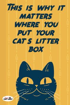 Unlike dogs, cats don't need to be potty trained. Cats naturally do their business on places that have a sand-like substance where they can paw right through it. And that's when a litter box comes Cute Kitten Gif, Kittens Cutest, Cats And Kittens, Cats Bus, Siamese Cats, Cat Care Tips, Pet Care, Pet Tips, Funny Cat Videos