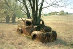 Abandoned car & mother nature