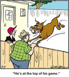 Are you playing? Cartoon Dog, Dog Cartoons, Dog Comics, Great Dane Dogs, Dog Houses, Animal Quotes, Funny Posts, Comic Strips, Scooby Doo