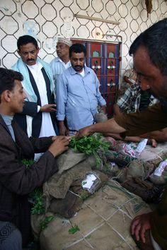 Il mercato del Qat, la droga sociale dello Yemen