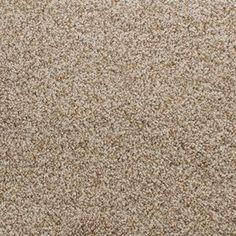 Stainmaster Exuberance Iii Active Family Brown/Tan Plus Carpet Sample