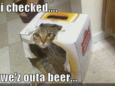 Well we'z have beer.