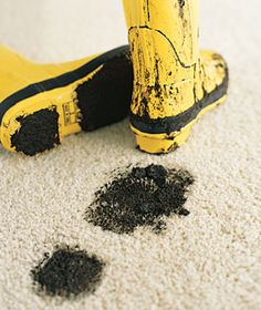 Carpet Cleaning Magic for all types of stains and carpets!