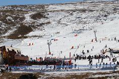 Been there, done it and got the T-shirt :) S Ki Photo, Ski Card, Ski Wedding, Ski Accessories, Ski Posters, Ski Slopes, Ski Lift, Ski Holidays, Ski Fashion