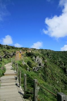Trail on Hallasan, a shield volcano on Jeju-do and KR's highest mountain.