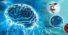 The amino acid taurine triggers new brain cells to grow in the area of the brain associated with memory. This can lead to improved cognition and recall for the aging brain. Natural News, Natural Health, Life Extension, Metabolic Syndrome, Traumatic Brain Injury, Brain Fog, Cardiovascular Disease, Brain Health, Alternative Health