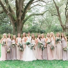 """355 Likes, 12 Comments - Bella Bridesmaids (@bellabridesmaids) on Instagram: """"Swipe left!!! #BellaBridesmaidsMobile, Taylor, with her crew in @amsalebridesmaids and…"""""""