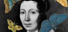 Τα εκπληκτικά έργα και η ζωή μιας «τυχοδιώκτριας» βοτανολόγου του 17ου αιώνα σε μια μοναδική έκθεση