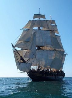 """all Ship """"Rose"""", a replica of a century Royal Navy frigate that cruised the American coast during the Revolutionary War. Built in Lunenburg, Nova Scotia, the Rose operated as a sail training vessel from 1985 to 2001 Royal Navy Frigates, Moby Dick, Old Sailing Ships, Sail Away, Wooden Boats, Tall Ships, Water Crafts, Nautical, History"""