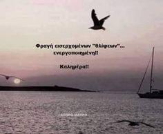 Big Words, Great Words, Favorite Quotes, Best Quotes, Life Quotes, Greek Quotes, True Words, Picture Quotes, Good Morning