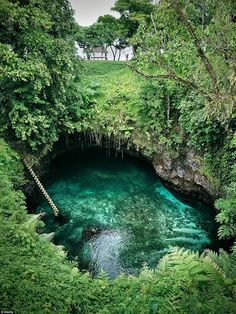 The To Sua Ocean Trench on the Samoan island. The pool is maintained by water flowing in from the South Pacific Ocean through a number of channels and tunnels