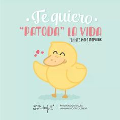 Te quiero patoda la vida. Mr Wonderful