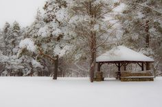 First snow Emery Park shelter. South Wales, NY