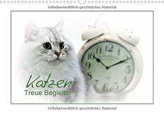 Katzen - Treue Begleiter (Wandkalender 2017 DIN A3 quer):... https://www.amazon.de/dp/3664981839/ref=cm_sw_r_pi_dp_x_N1wqyb8RWBHCA #Kalender #Wandkalender #2017 #Kalender2017 #Reise #dekorativ #Planer #Monatskalender #Geschenk #Katzen #Katze #Haustier #Rassekatze #niedlich