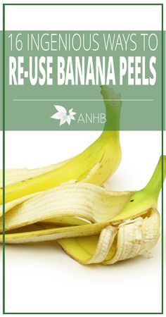 16 Ingenious Ways to Re-Use Banana Peels - All Natural Home and Beauty