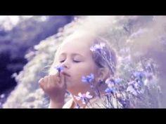 El Reset por Suzanne Powell - YouTube