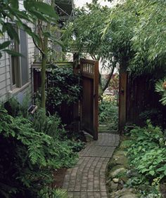 How to convince Chris to make our side yard look like this??
