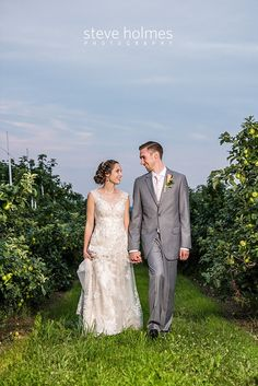 Bride and groom walk hand and hand through an orchard together. Photo by Steve Holmes Photography