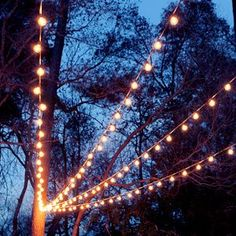 A Canopy Of String Lights In Our Backyard. Restaurant PatioHanging ...