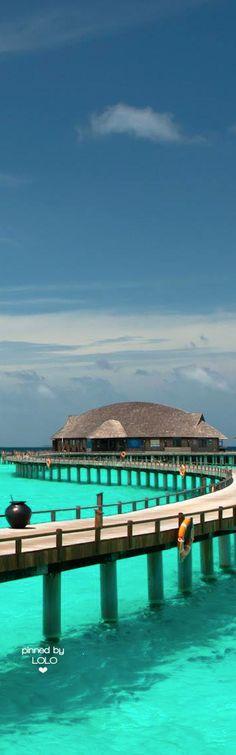 The Sun Siyam Iru Fushi Maldives   LOLO❤︎