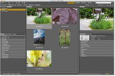 Selecting a photo to open in Camera Raw using Adobe Bridge CS6. Image © 2013 Photoshop Essentials.com