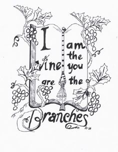 I Am The Vine You Are The Branches Vine And Branches
