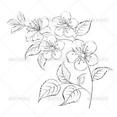 Spring Cherry Blossom Sakura - Flowers & Plants Nature